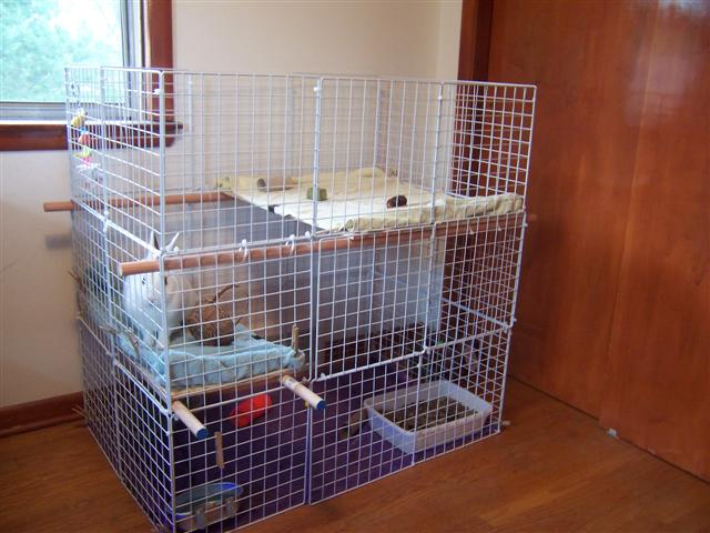Housing - How to make a rabbit cage ...